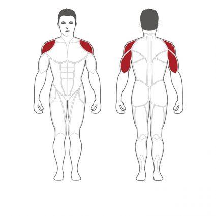 NOMB développé épaules